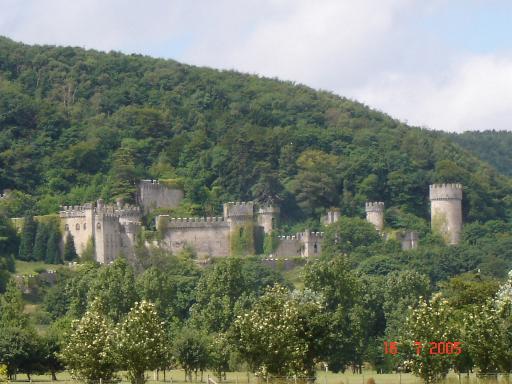 Castle among trees