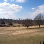 Knole parkland