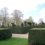 Topiary in South garden