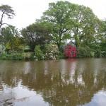 Fish Pond, Cadhay