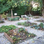 Period herbal plots