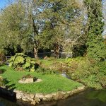 Bilbury, garden