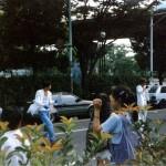 Musicians in Yoyogi Park