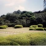 Park scene near Shinjuku, Tokyo